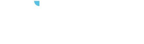 Wisecap Group
